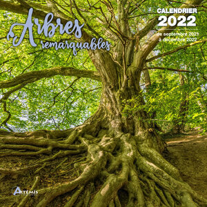Calendrier 2022 Arbre remarquable