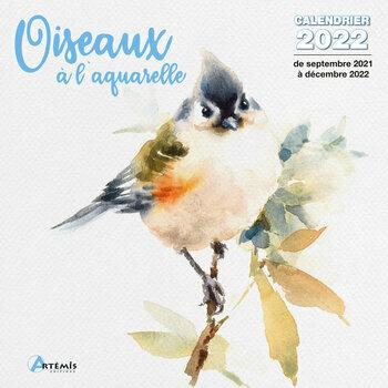 Calendrier Bourse Aux Oiseaux 2022 Calendriers oiseaux et rapaces 2022