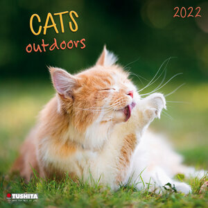 Calendrier 2022 Chat nature