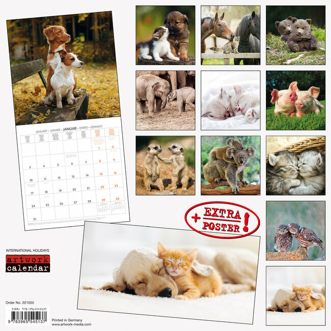 Calendrier Animaux 2022 Calendrier 2022 Animaux AVEC POSTER OFFERT