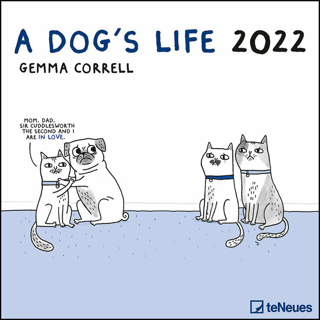 Calendrier Humour 2022 calendrier BD humour chat   a dog's life 2022
